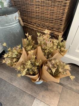 Natural Dried Nigella Bunch