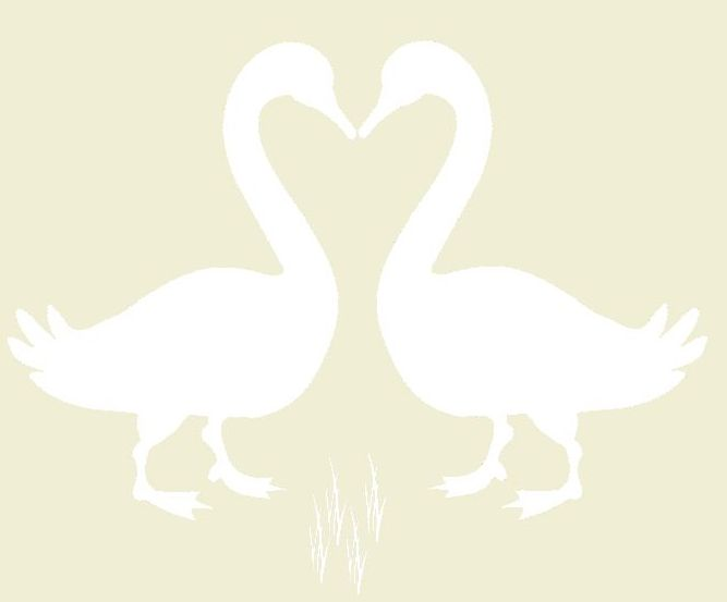 geese-logo-beak-to-beak-grass