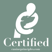 CCAC Certified Badge[637]