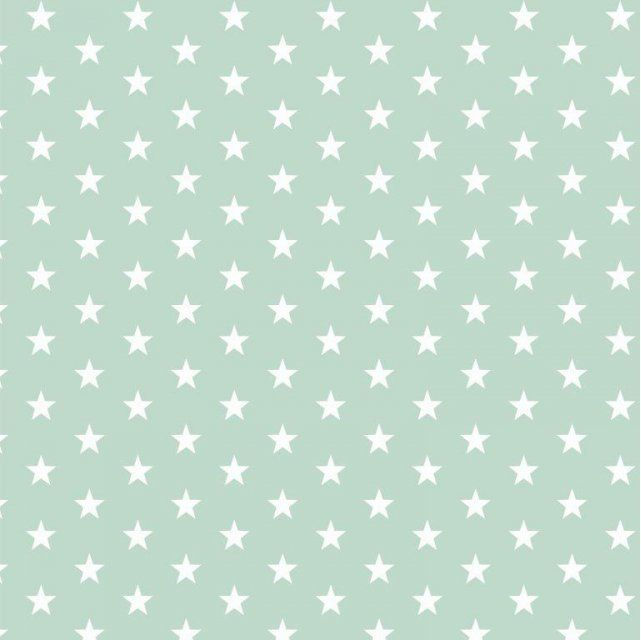 White stars on mint  Extra wide 57""