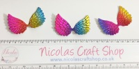 Irredescent rainbow wings
