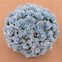 MULBERRY FLOWERS - BABY BLUE