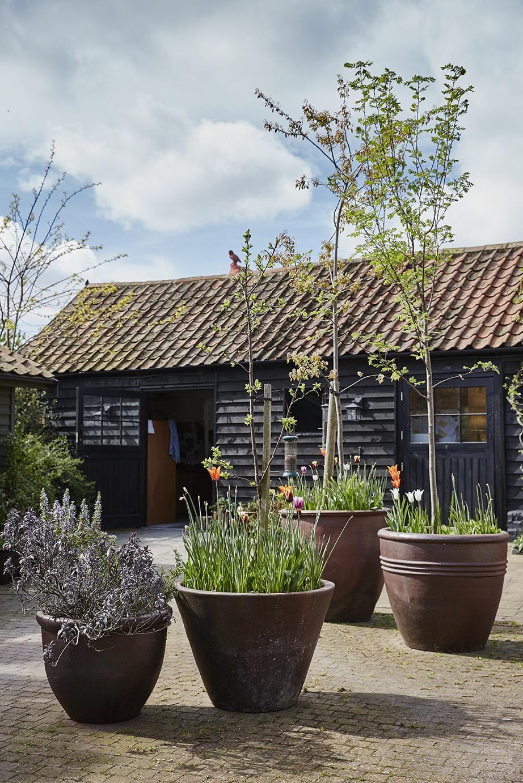 Studio Garden Stewart Hearn photo Alun Callender