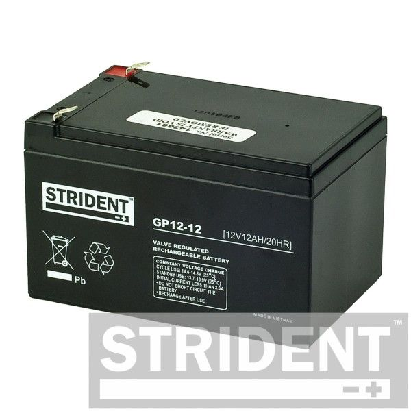 Pair of Strident 12 v 12 Ah AGM Mobility Scooter battery