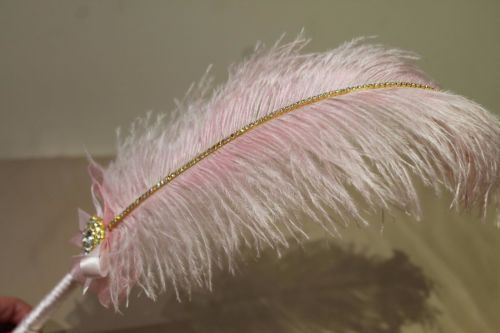 Large Pink Ostrich Feather Pen with Embellishment