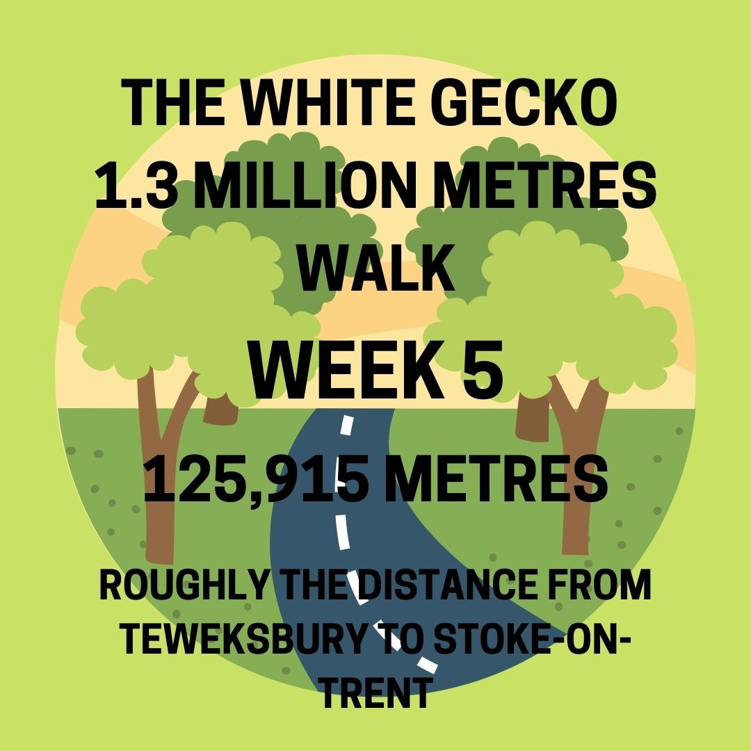 WALK WEEK 5