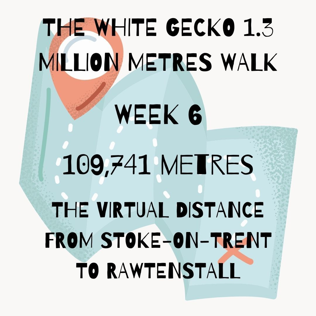 WEEK 6 WALK