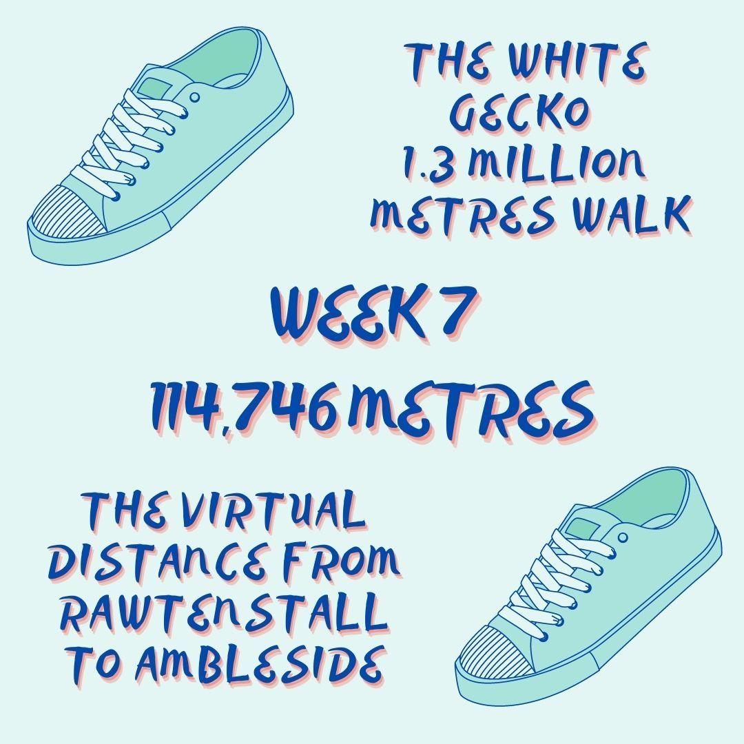 WEEK 7 WALK