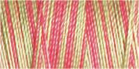 Cotton No.30: Variegated: 300m 4127