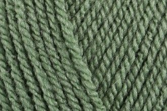 Cypress - Stylecraft Special Double Knit 1824