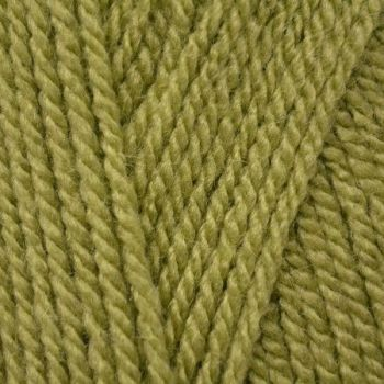 Stylecraft Special 4ply,  100g Meadow