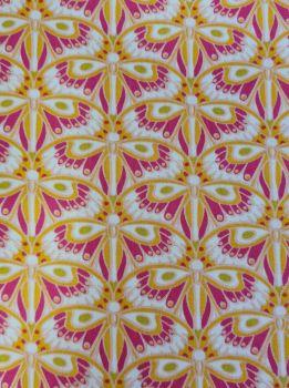 Job Lot  Dashwood studio Belle Epoque Orange & pink 3m 83cm
