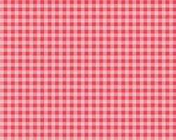Riley Blake - Strawberry Honey - Pink and Red Gingham C10245