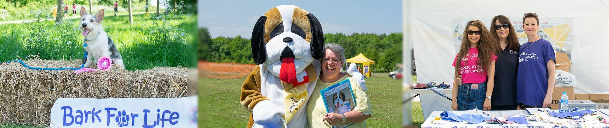 Bark for Life Fundraising Tips