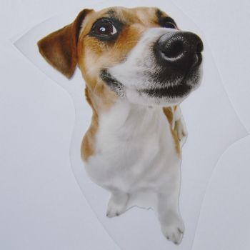 IRON ON HEAT TRANSFER, JACK RUSSEL DOG, 14CMS x 21CMS. IDEAL FOR DECORATING CUSHIONS, CLOTHES ETC.