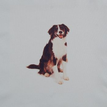 18 INCH CUSHION PANEL WITH COLLIE DOG ON A PALE CREAM FURNISHING FABRIC.