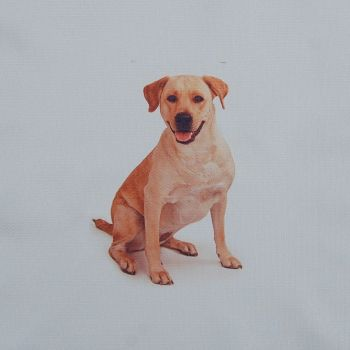 18 INCH CUSHION PANEL WITH LABRADOR DOG ON A PALE CREAM FURNISHING FABRIC.