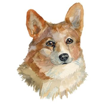 8 INCH COTTON SQUARE, WELSH CORGI.