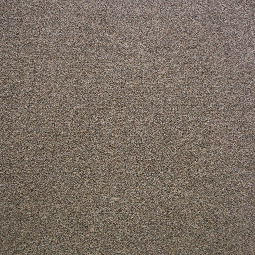 Top Saxony Biscuit 4307 carpet