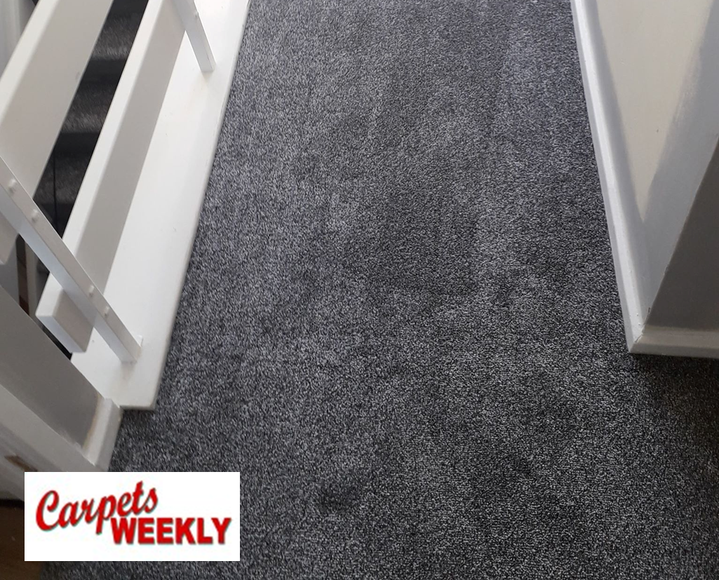 Carpets Weekly Apollo Dark Grey Carpet with Grey Oak laminate Combi 1