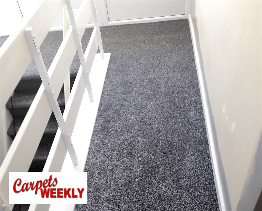 Carpets Weekly Apollo Dark Grey Carpet with Grey Oak laminate minate Combi 3