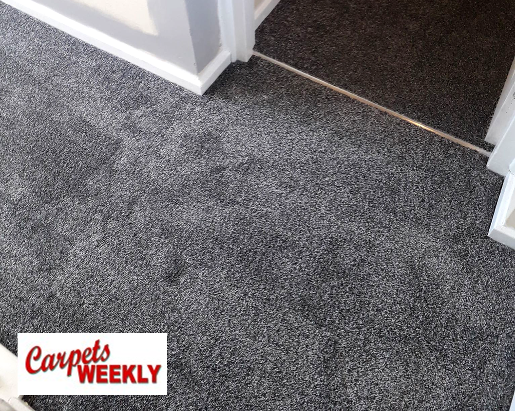 Carpets Weekly Apollo Dark Grey Carpet with Grey Oak laminate