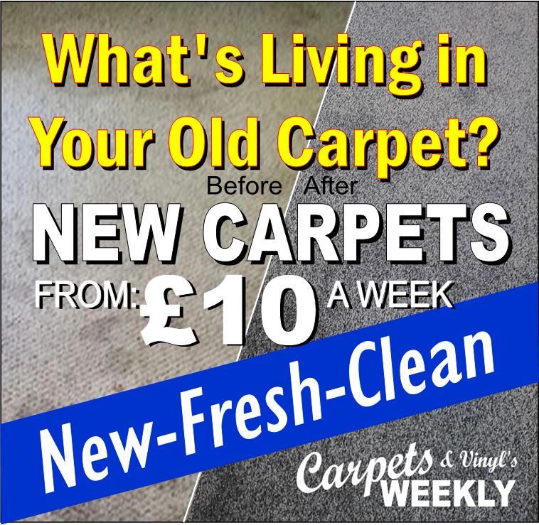 Clean, New Carpets From Carpets Weekly
