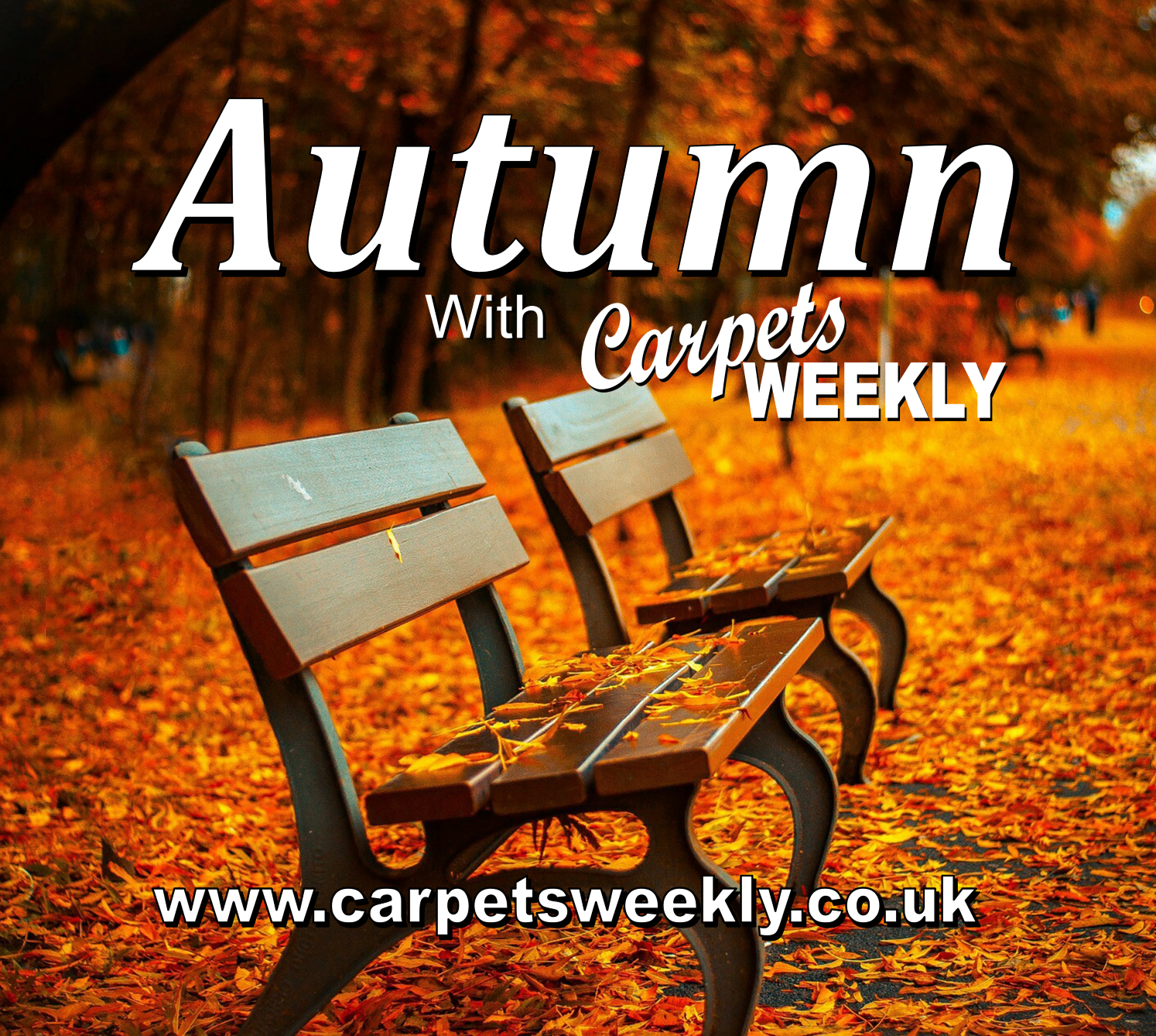 Autumn with Carpets Weekly
