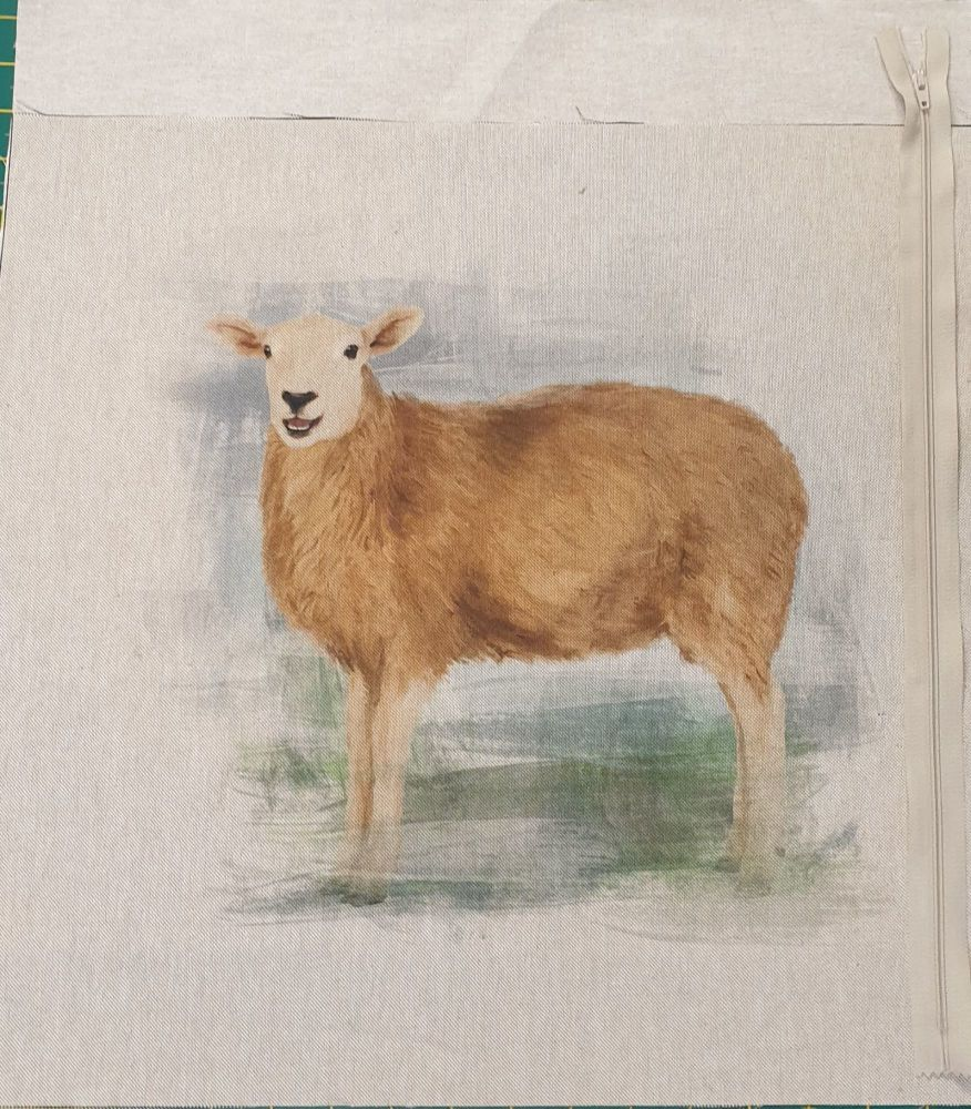 popart sheep