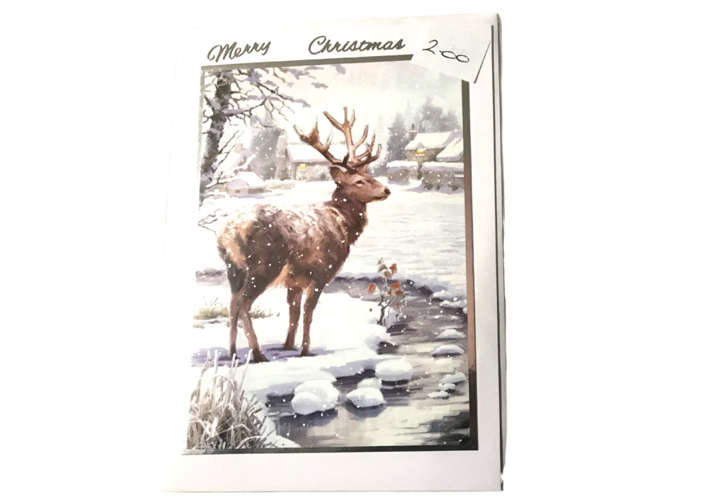 Deer Christmas card by Alison Gilbert
