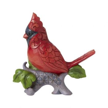 A Cardinal Signs for the Joy He Brings- Cardinal on Branch 6008416