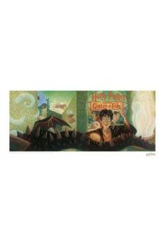 Harry Potter Art Print Goblet of Fire Book Cover Artwork Limited Edition 42 x 30 cm FNTK-THG-HP44