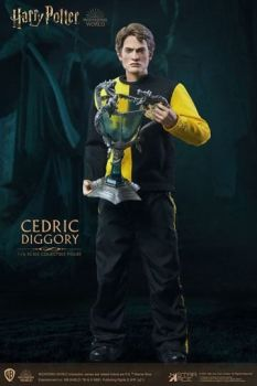 Harry Potter My Favourite Movie Action Figure 1/6 Cedric Diggory Triwizard Version 30 cm STACSA0068