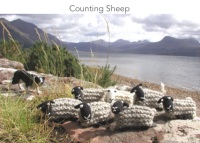 Counting Sheep kit