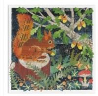 Squirrel & Toadstools Greetings Card