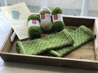 Locket's Fair Isle Trellis Mitts Kit 5 green and oatmeal