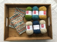 Locket's Fair Isle Wristies kit - Water Meadow
