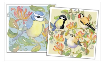 Garden Birds Mini Card Pack