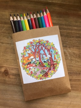 A set of long colouring pencils