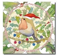 Robin in a Santa hat pack of 6 Christmas Cards