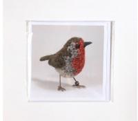 Robin greetings card by Jose Heroys