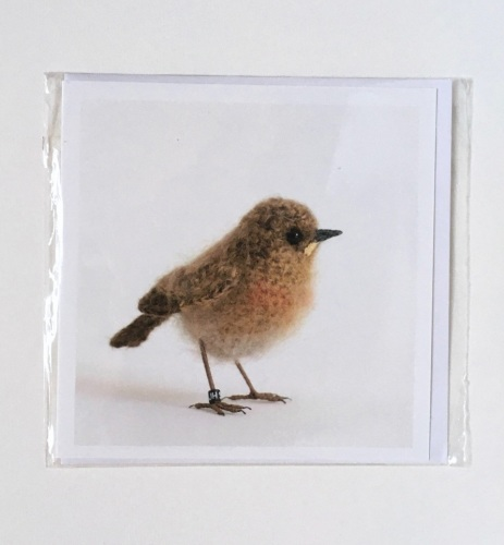 Baby Robin greetings card by Jose He