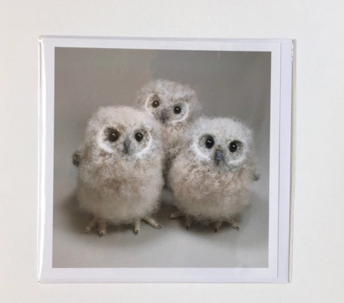 Baby Owls greetings card by Jose Her