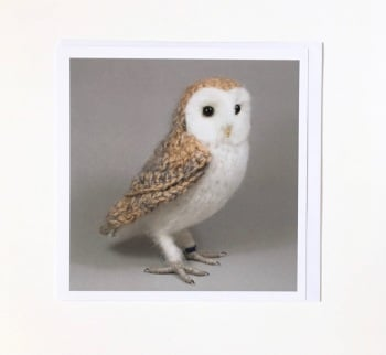 Barn Owl greetings card by Jose Heroys