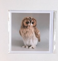 Tawny Owl greetings card by Jose Heroys