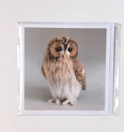 Tawny Owl greetings card by Jose Her