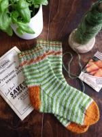 Locket's Carrots Sock Kit