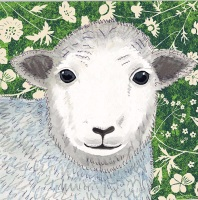 *new* Wild Wood   Herdwick Sheep card
