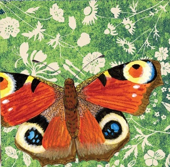 *new* Wild Wood Peacock Butterfly card