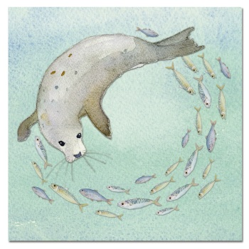 Seal and Shoal card